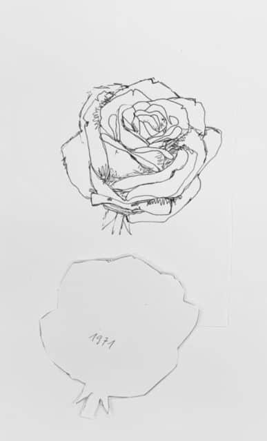 anna-aregger-individuelle-rosen